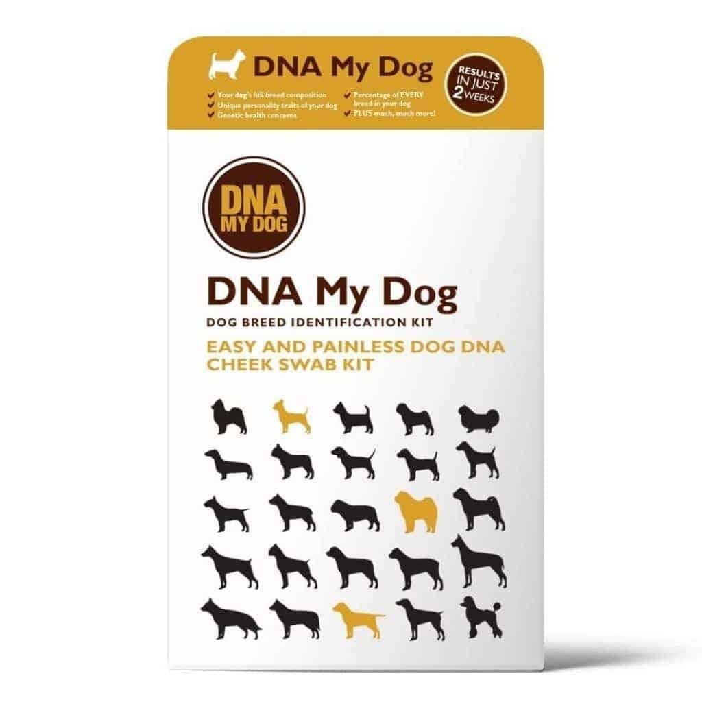 DNA My Dog test kit.