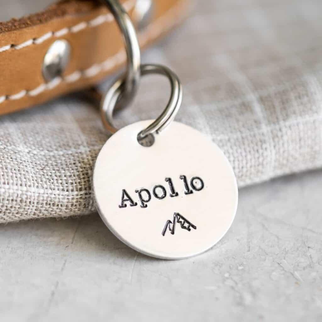 Apollo dog tag with a mountain on it.