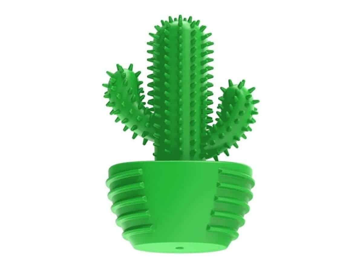 Cactus dog chew toy.