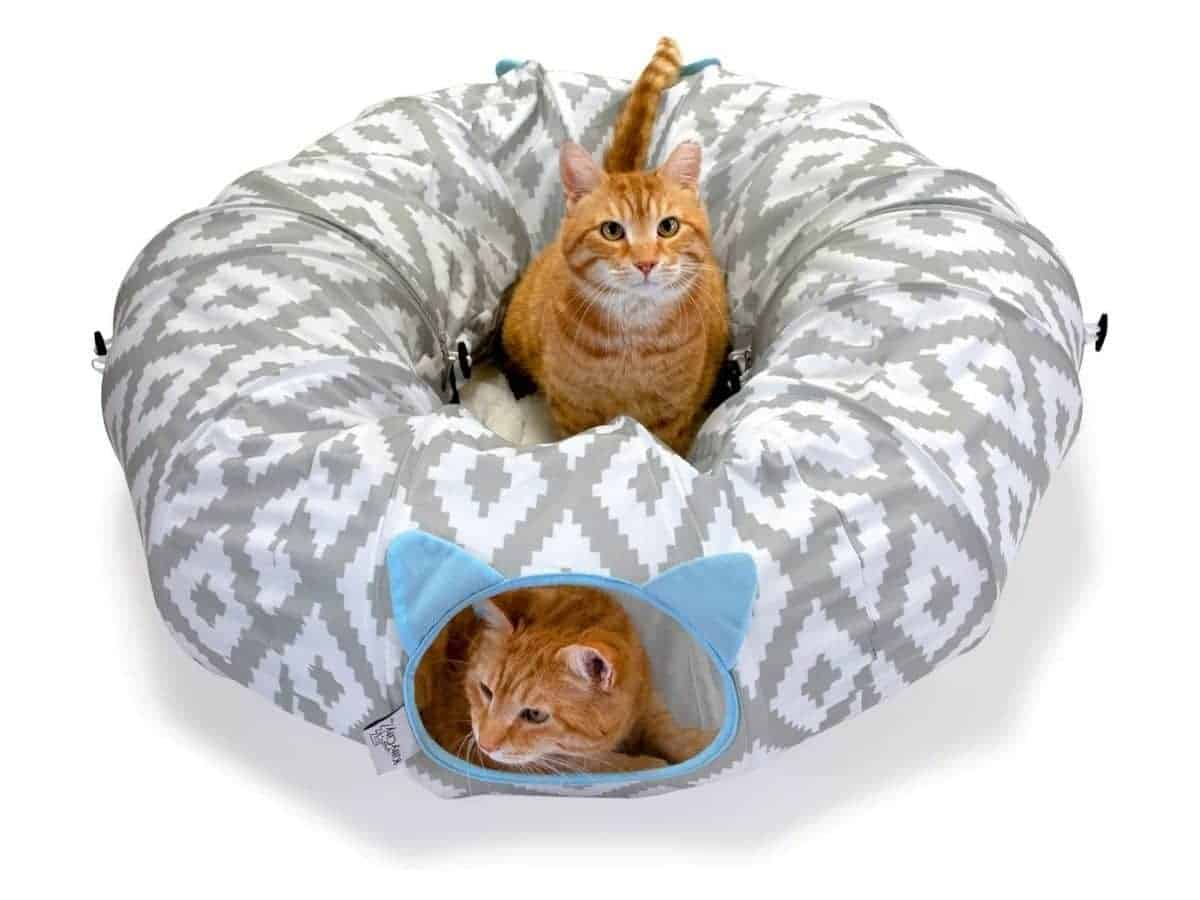 Two cats in a tunnel bed.