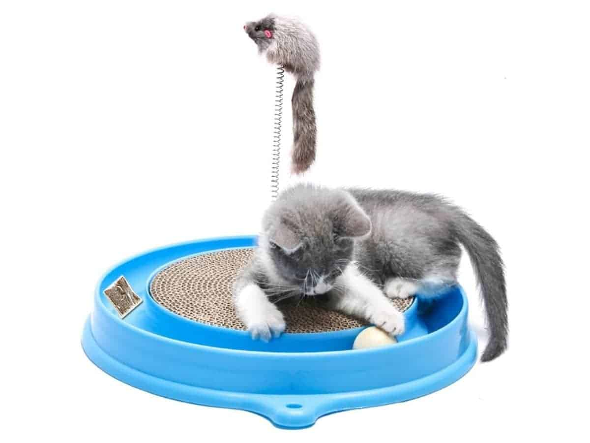 Cat playing on a scratcher toy with a ball, catnip, and toy mouse.