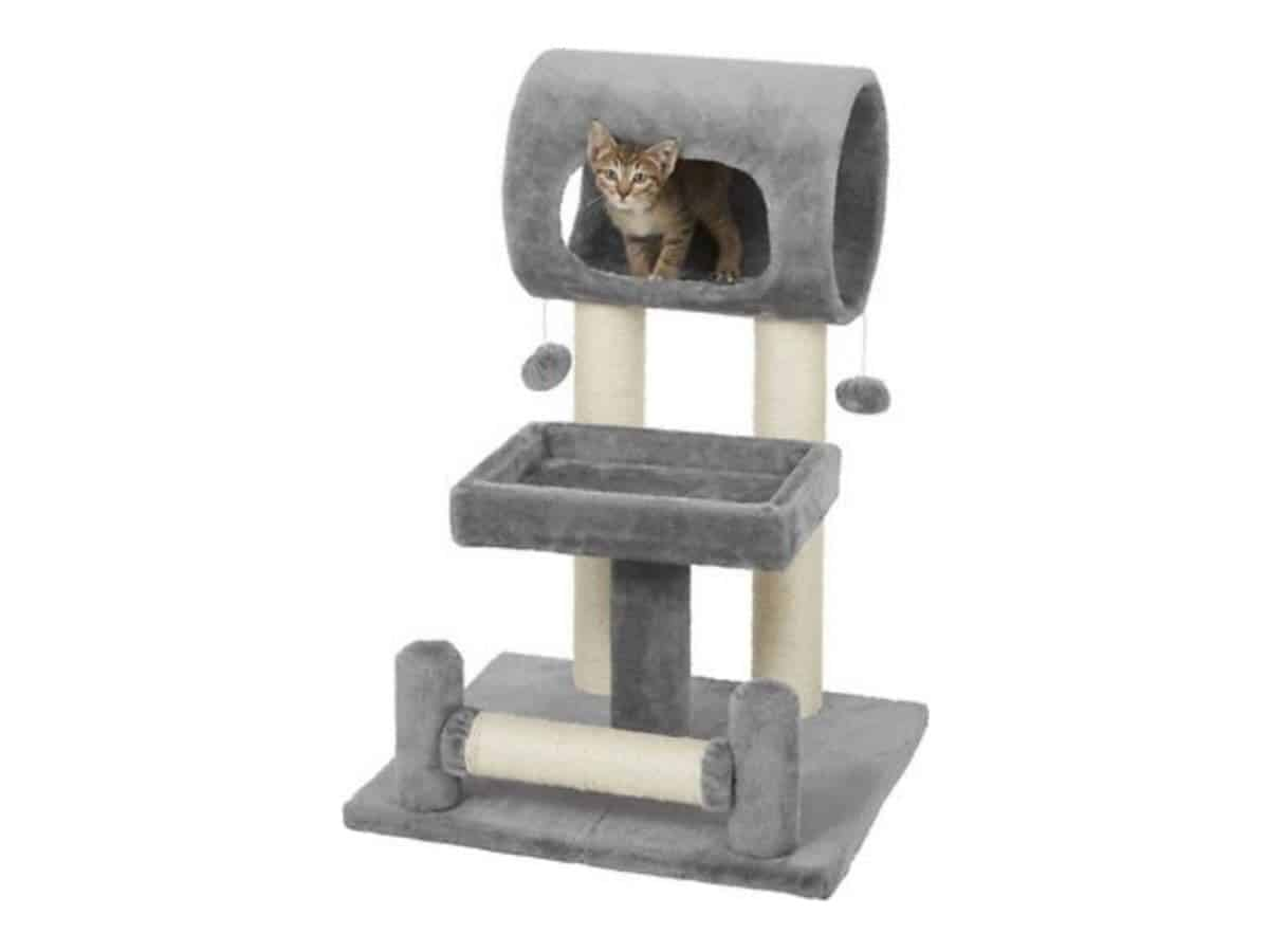 Cat on a cat tree with three levels.