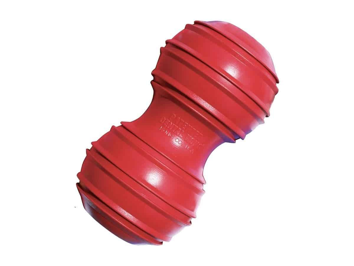 Kong dental chew toy for dogs.