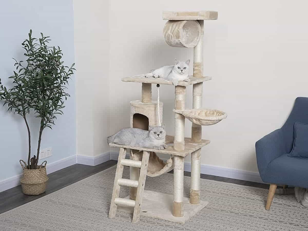 Two cats on a beige cat tree with a ladder and multiple platforms.